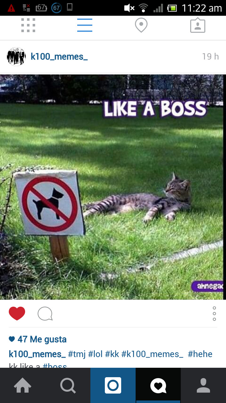 Like a boss - meme