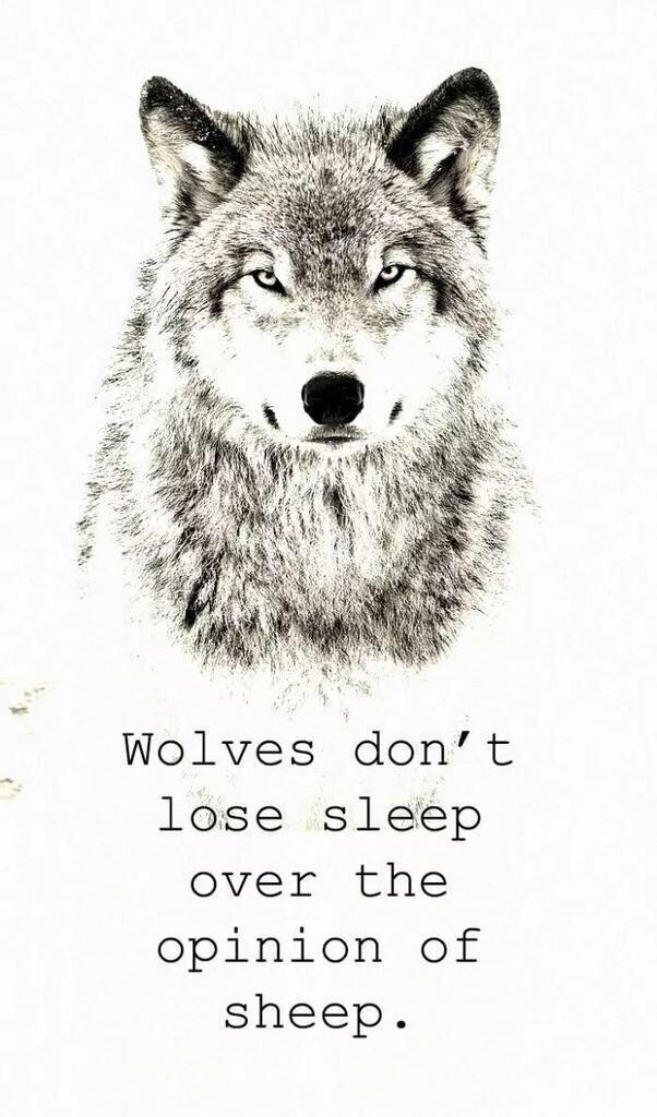 wolves - meme