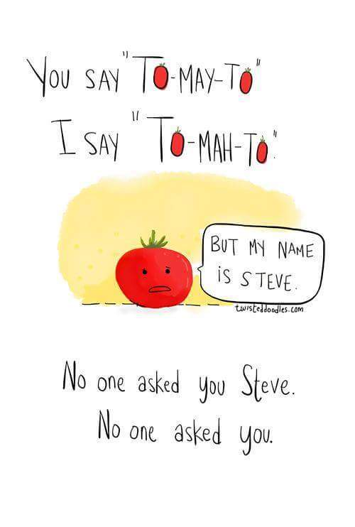I am Steve - meme