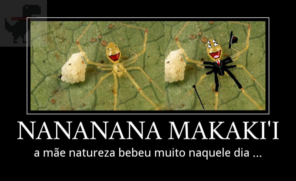 Foda mesmo é vc encontrar a musica do batima no nome de uma aranha - meme