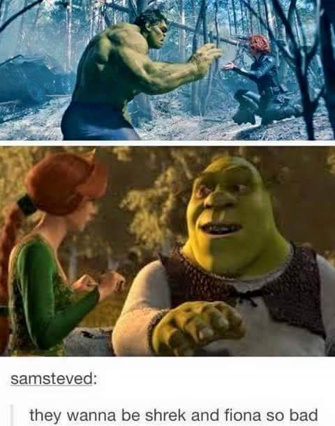 Hulk and Black widow are like Shrek and Fiona - meme