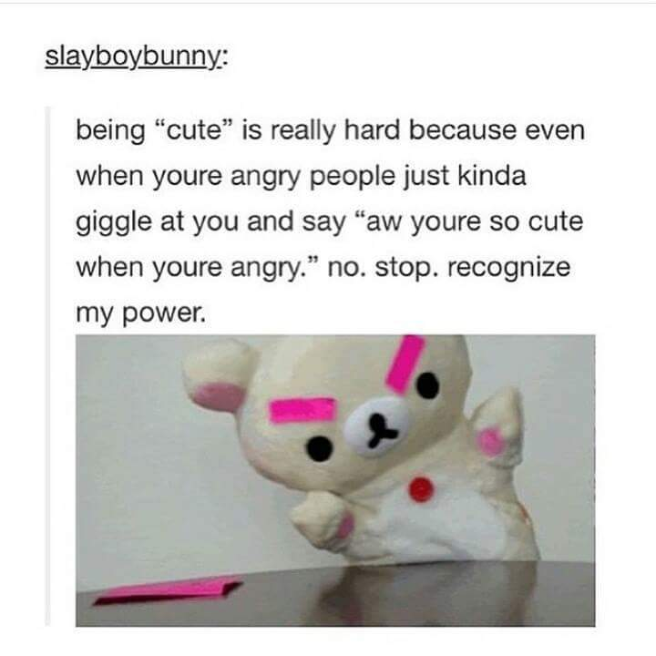 I'm not cute b*tch - meme