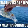 El titulo se fue a pescar, pez invisible
