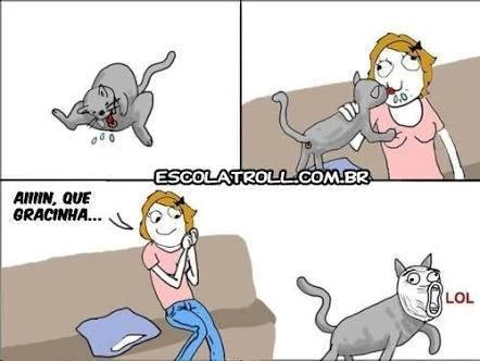 Gatos !!! - meme