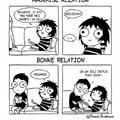 bonne relation, je suis celibataire :)
