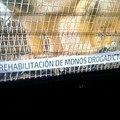 Un dia normal en el noticiero de Chile