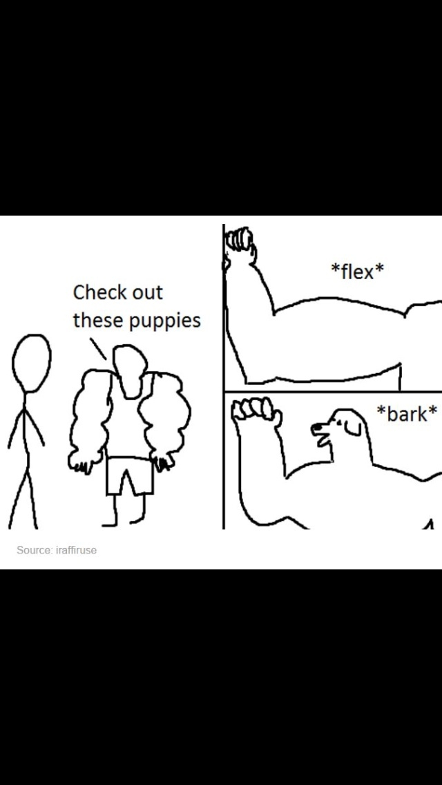 can I pet ? - meme