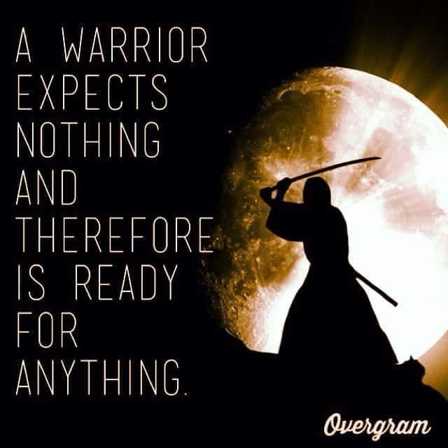 I'm a warrior - meme