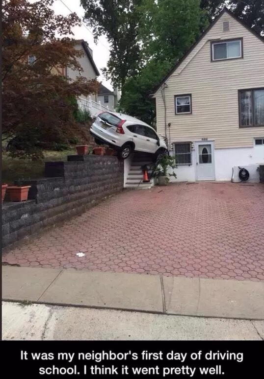 my neighbors first day - meme