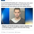 Typical Florida news