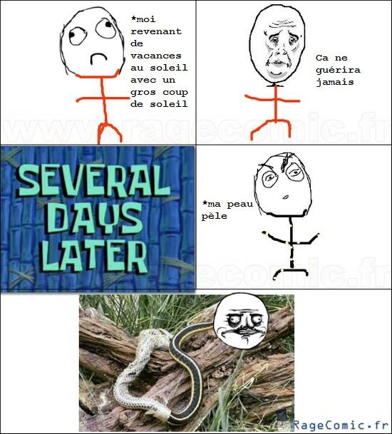Snake - meme