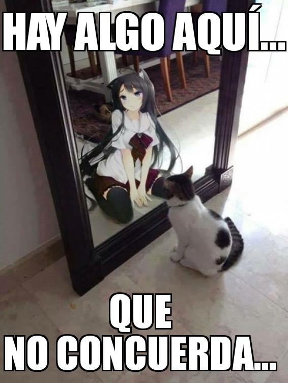 (ಠ_ಠ) - meme