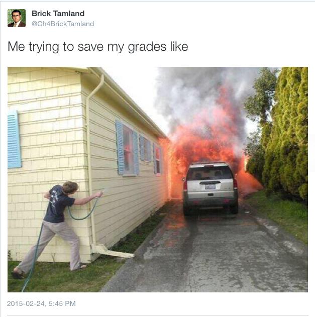 Grades - meme