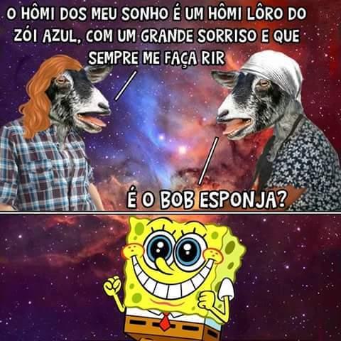 bob s2 - meme