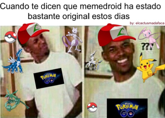 Pokemon GO everywhere - meme