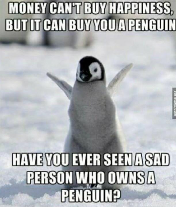 Penguin :3 - meme