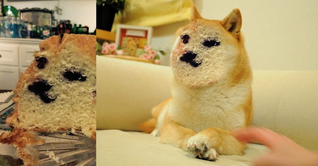 Doge :v - meme