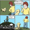 Perro asesino