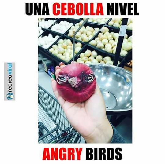 Cebolla bird - meme