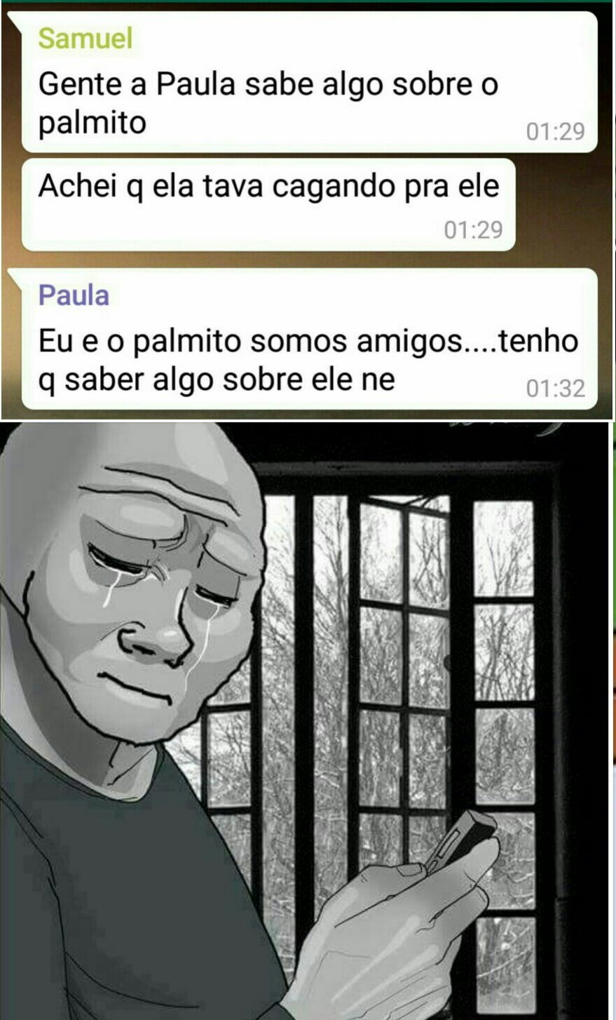 Pobre Palmito... - meme