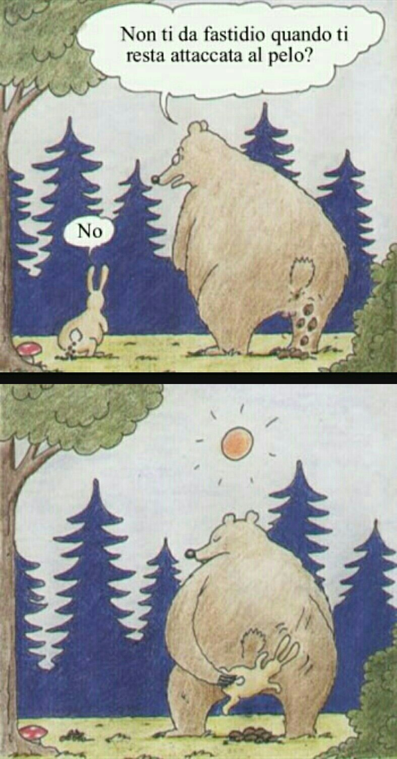 картинки прикол медведь и заяц марии пляже