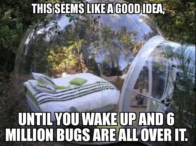 Spiders everywhere. - meme