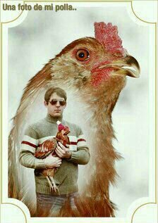 Su polla XD - meme