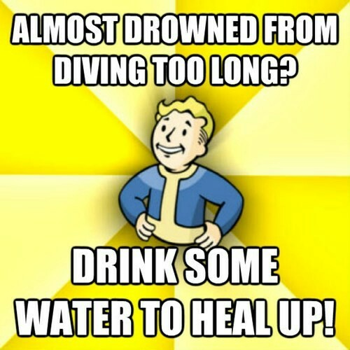 I never played Fallout... I'm too poor ;-; - meme