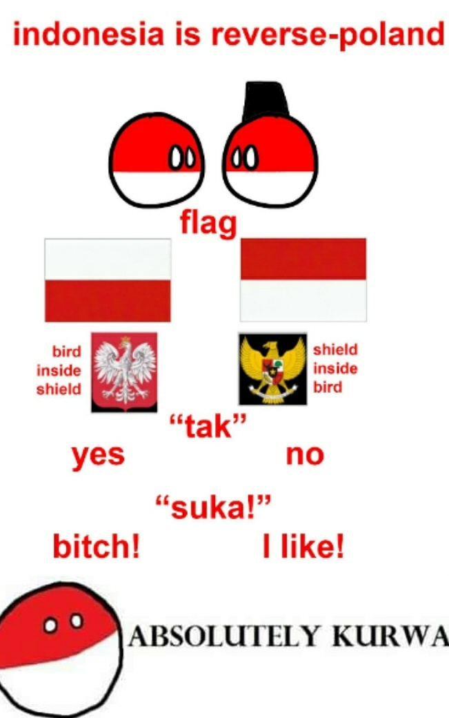 Polen cannot into space, Indonesia can into space - meme