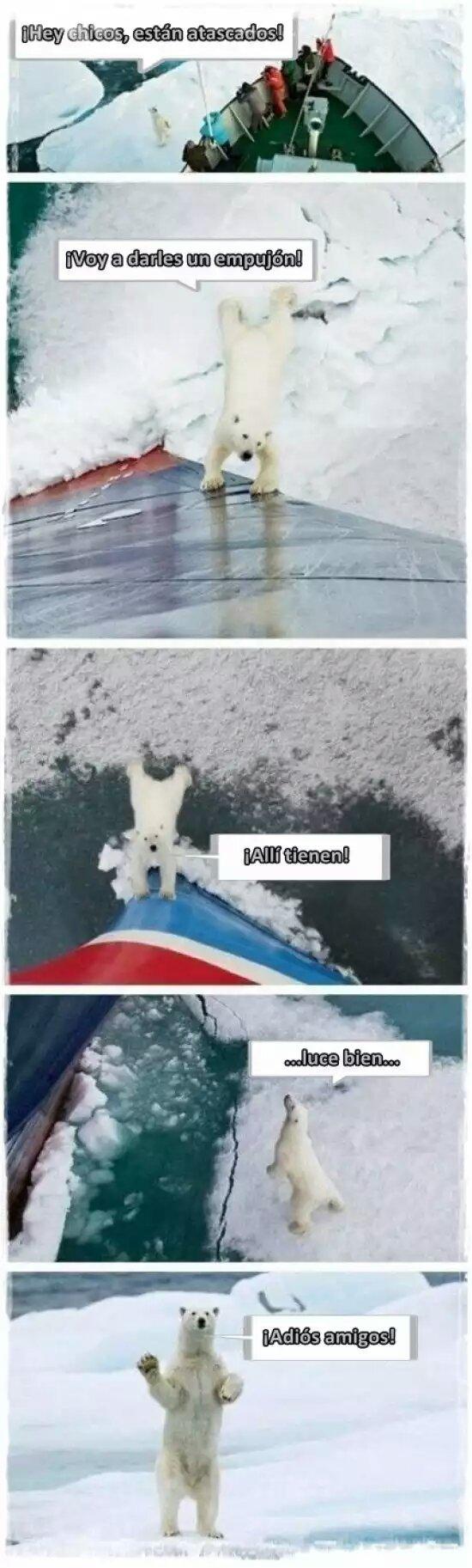 Polar :D - meme
