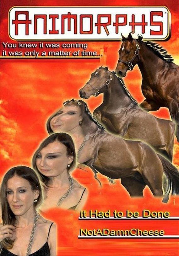 s.j.p horse - meme