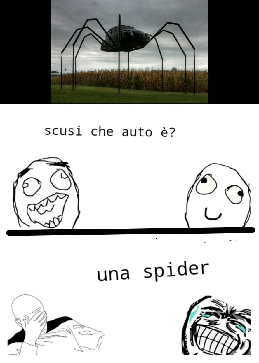 Cito Leo Cascioni - meme