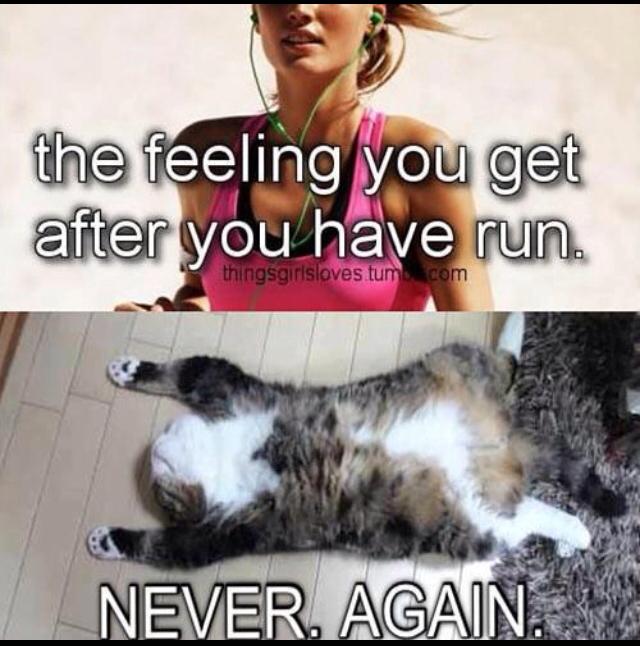 No more running! - meme