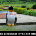 1st comment gets used by the penguin