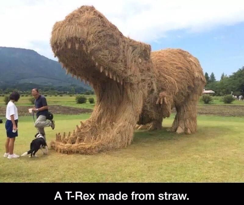 A T-Rex - meme