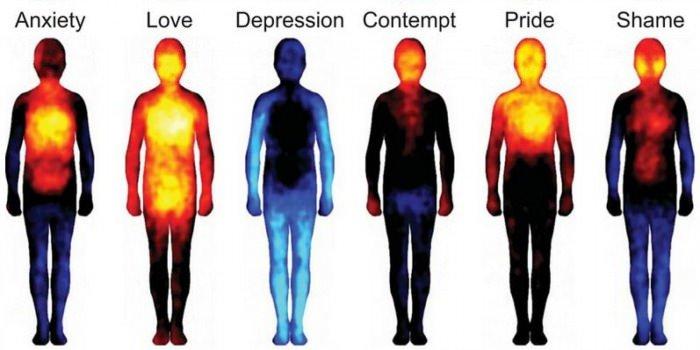 Ton état d'esprit en fonction de ta température - meme