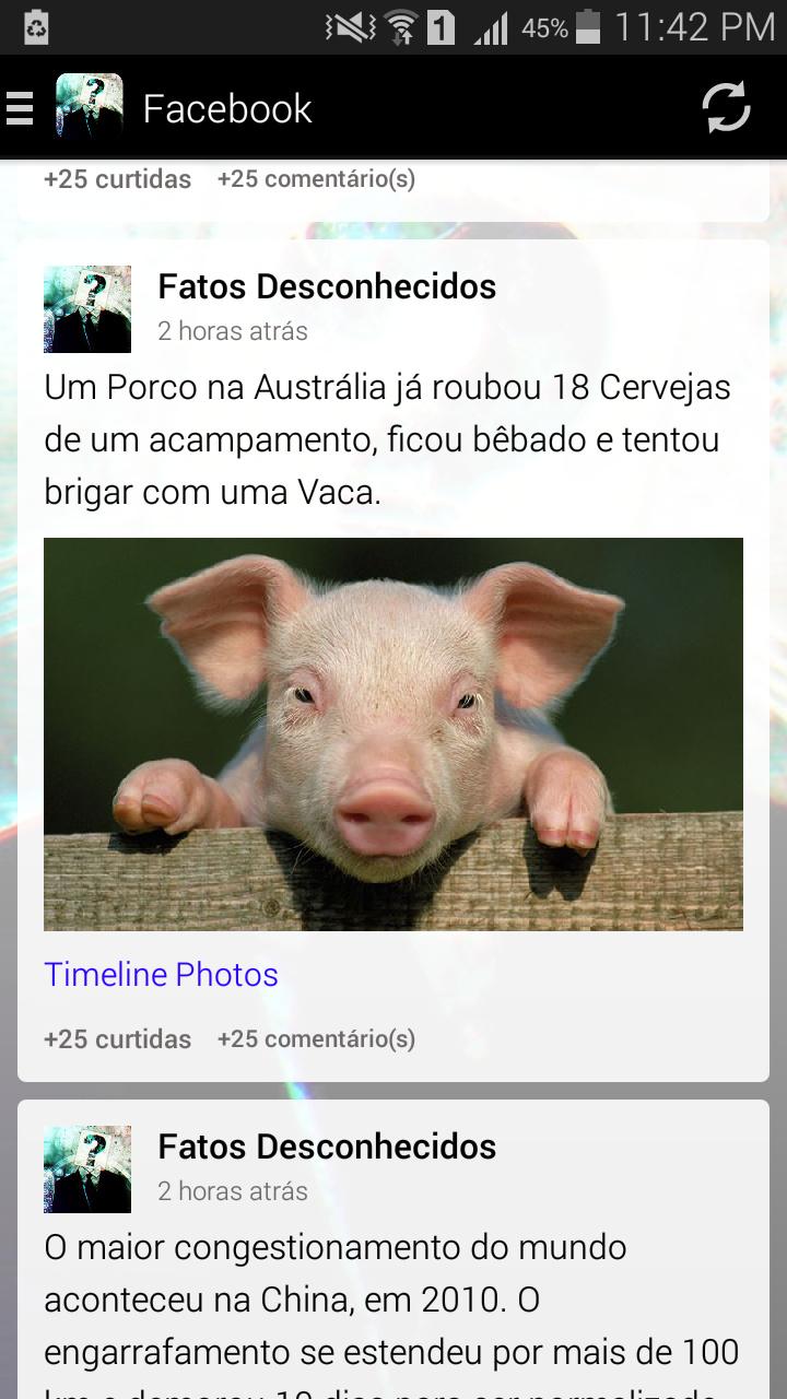 Porcos - meme