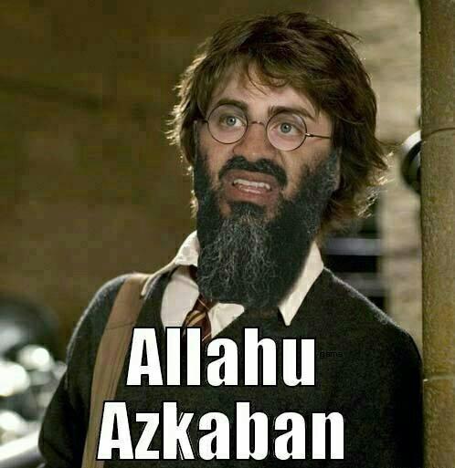Harry pot de fleurs - meme