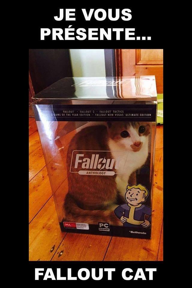 Le dernier Fallout est sorti! - meme