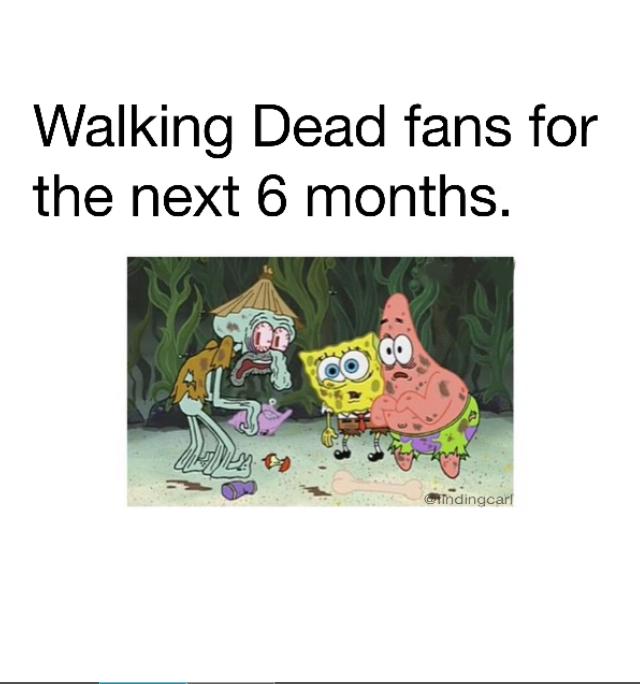Walking Dead fans until october - meme