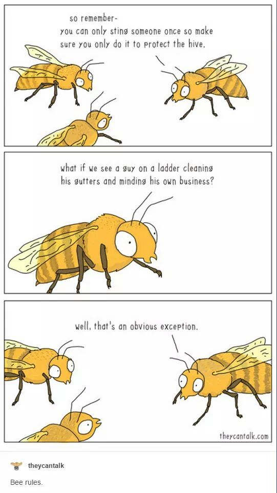 Bee Bastard Logic - meme