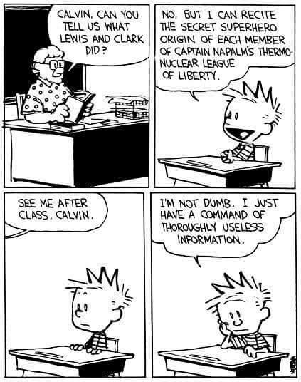 Calvin you clever boy you - meme