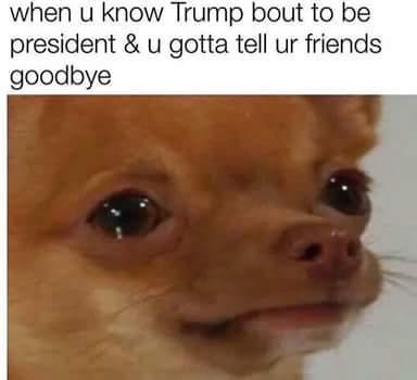 Goodbye my lover - meme