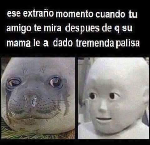 ewe - meme