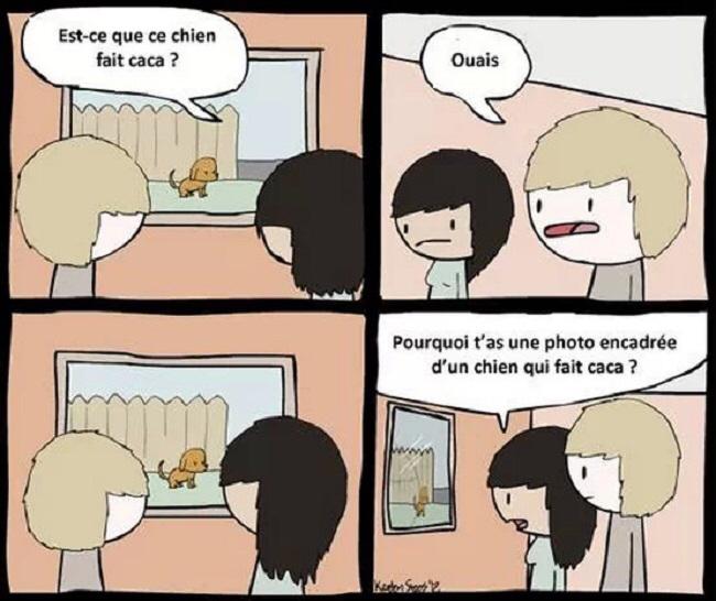 Chien + caca = vie - meme