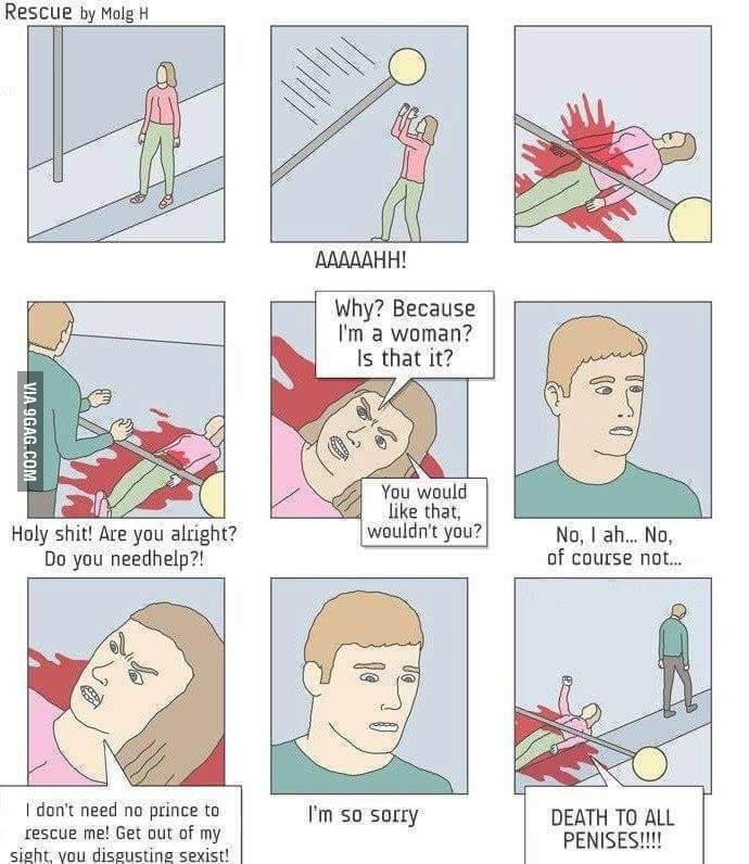 Feminazism - meme