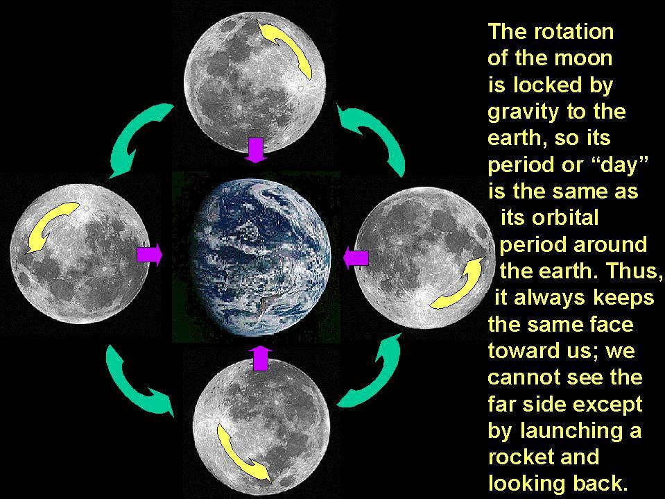 rotation of the moon - 734×718