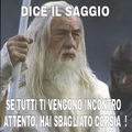 Sondaggio: Chi è il miglior memedroider italiano del momento?