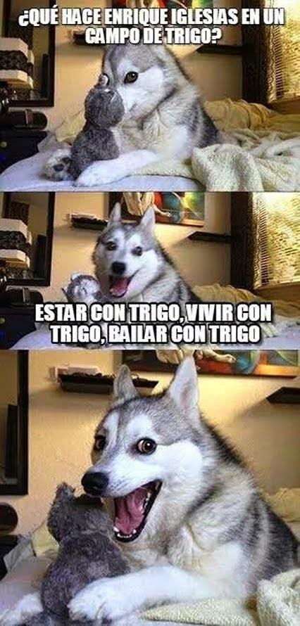 Trigo :v - meme