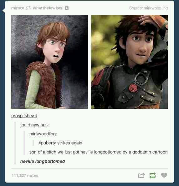 Puberty - meme